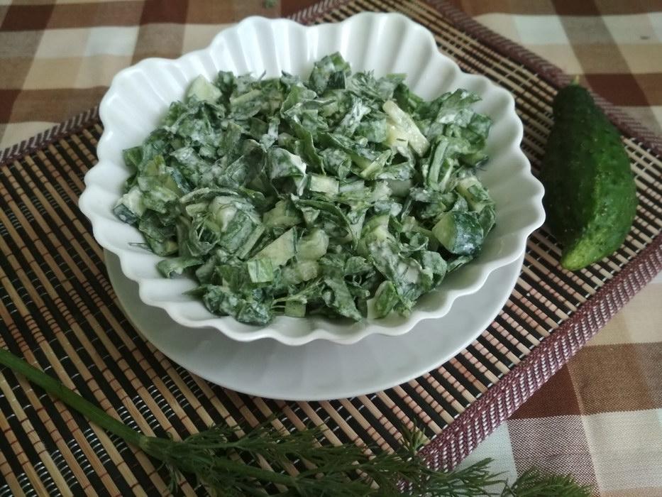 Салат со щавелем и огурцом – рецепт самого весеннего блюда
